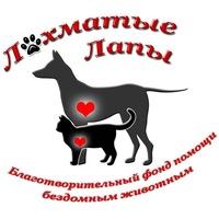 фонд помощи животным Лохматые лапы